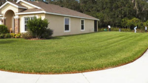 lawn care in st pete
