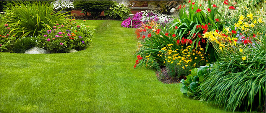 Residential Landscaping in St.Pete & Clearwater - Powell Property (PPM)